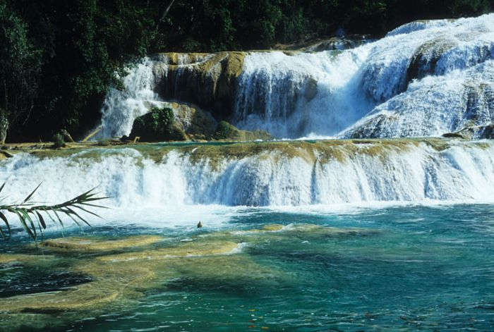 Cascadas de Agua Azul. Chis.