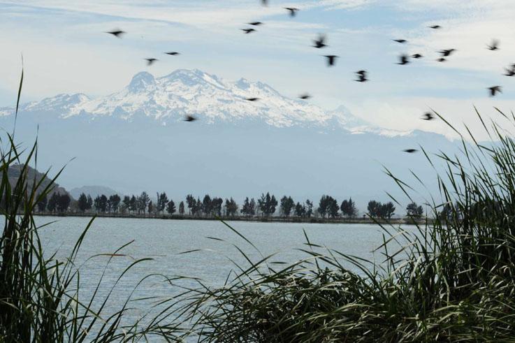 Iztaccihuatl y lago de Tláhuac