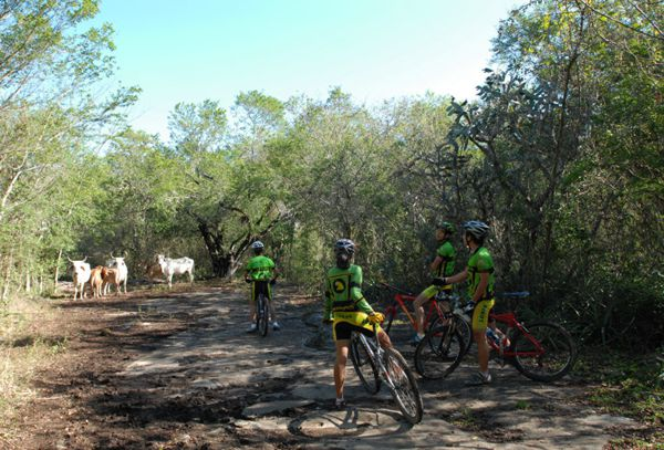 Actividades de ecoturismo y ciclistas entre vacas en las tierras bajas.