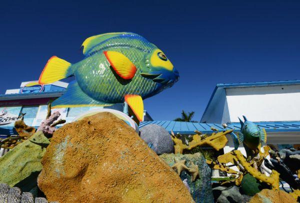 Escultura de pez ángel y arrecife en Zona Hotelera de Cancún, Q. Roo.