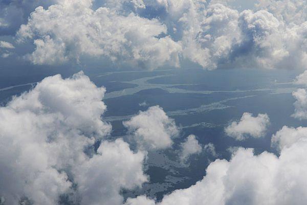 Tierras mayas inundables con mangles y selvas tropicales en Q. Roo.