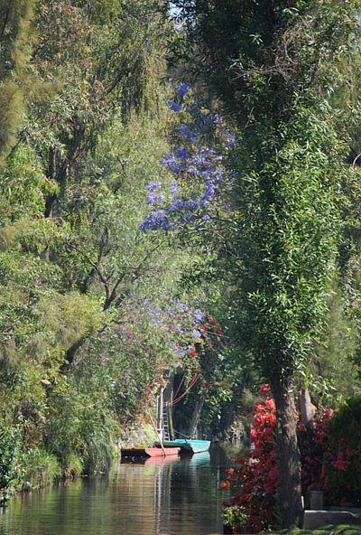 Canales en Xochimilco.