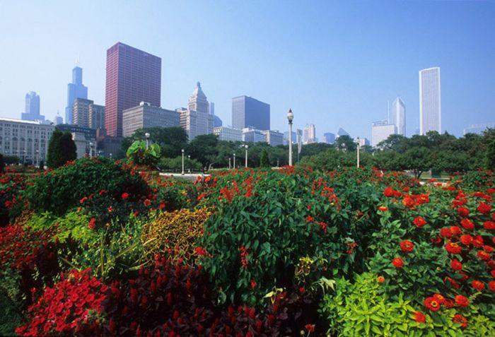 Skyline de la ciudad y jardín colorido en la zona de museos.