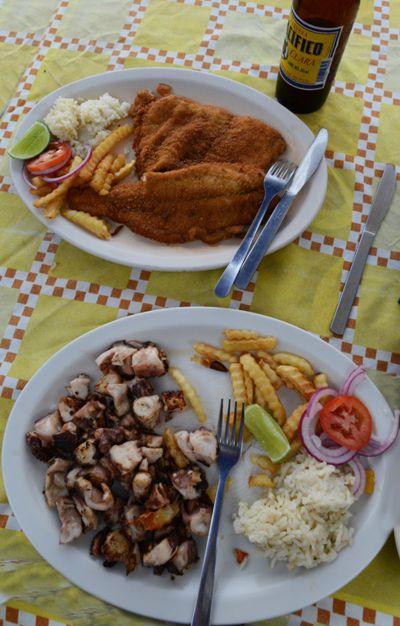 Pulpo y pescado en playa de Riviera Nayarit