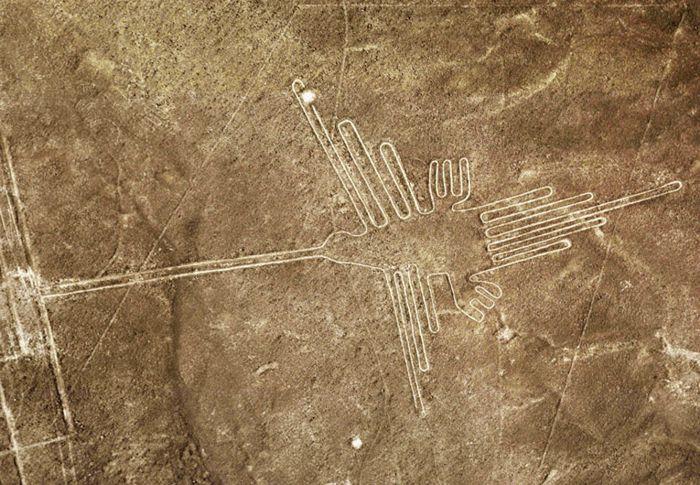 Colibri en Líneas de Nazca, suroeste de Peru. Foto Promperu