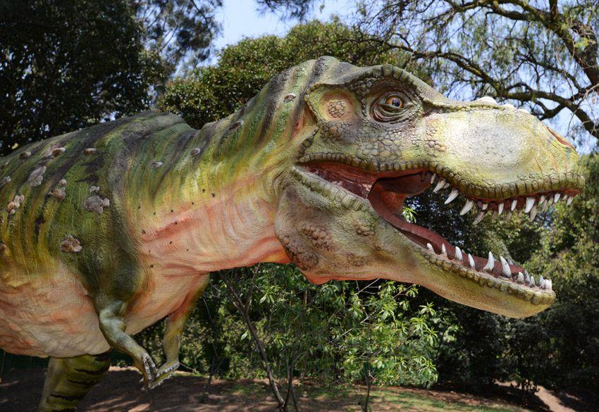 T-Rex hembra cuida sus huevos y crias en el Parque Ecológico Xochitla